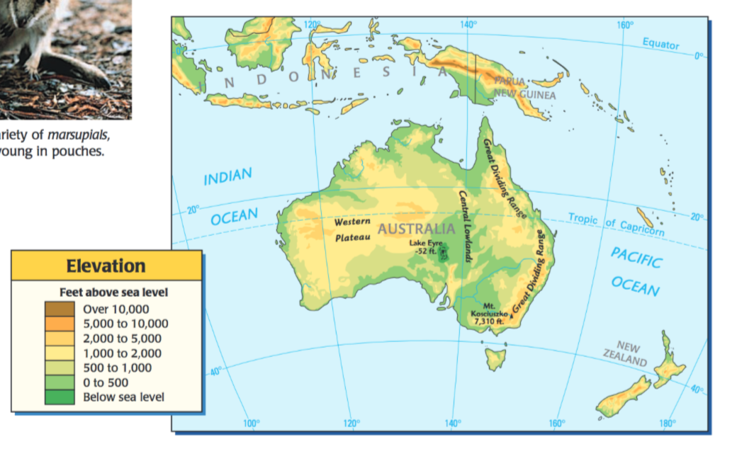 34 Australia Lesson 2 Mr Peinert S Social Studies Site